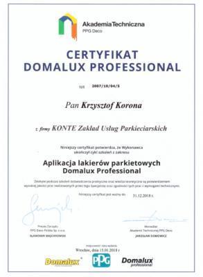 Certyfikat Domalux Professional